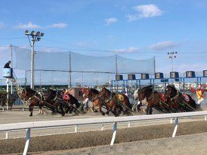 北海道遺産 ばんえい競馬